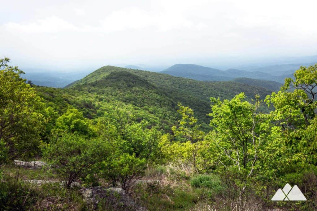 Cowrock Mountain: Appalachian Trail from Blood Mountain