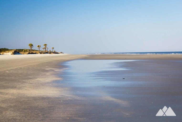 Cumberland Island: hike miles of wide, serene beaches and herds of wild horses at this National Seashore in Georgia