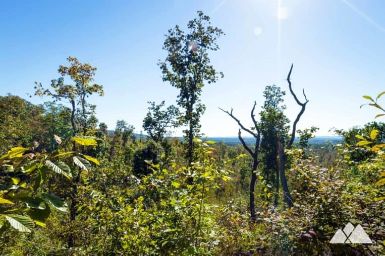 Hike the Pine Mountain Trail through the path of a tornado at Dowdell's Knob in FDR State Park