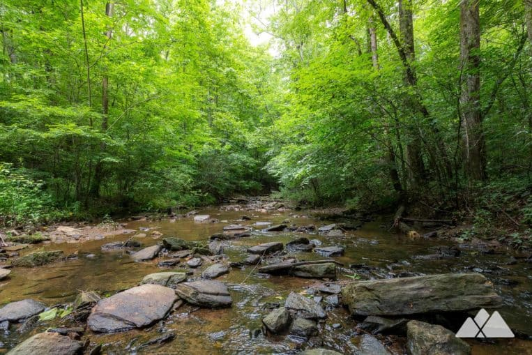 Top Atlanta hikes: follow the Johnson Ferry Trail on the Chattahoochee River to the pebble-lined Mulberry Creek, a great swimming hole for dogs