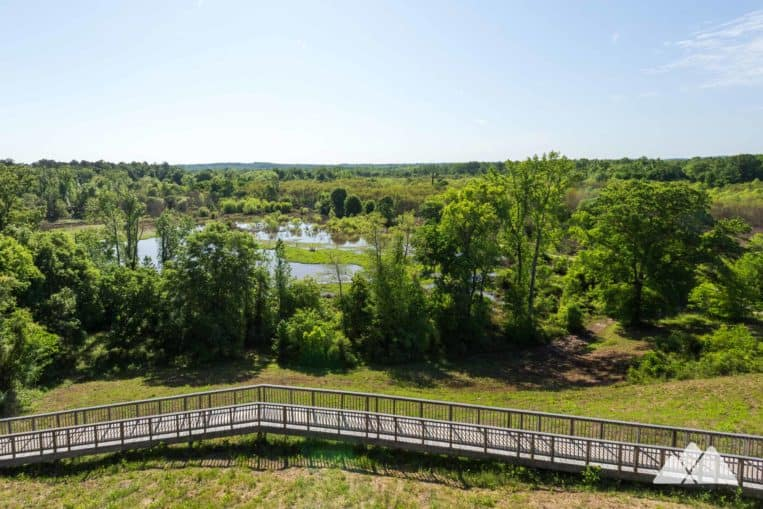 Ocmulgee National Monument: hike through wildlife-filled wetlands and the reflections of the park's towering Native American mounds
