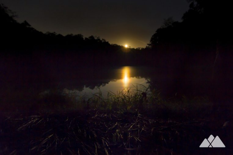 Hike the ranger-led guided twilight hike at Panola Mountain State Park to catch moonrise over a glassy pond near the mountain's base