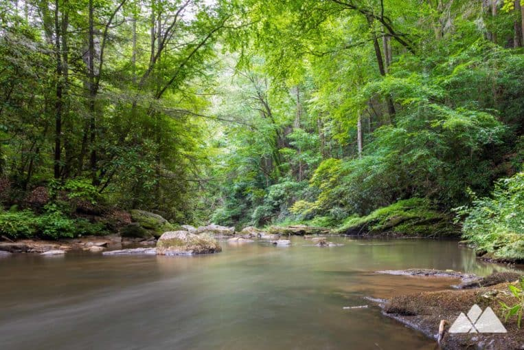 Panther Creek Falls: hike through a lush forest on the trail's eastern trailhead at Yonah Dam