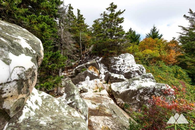 Shining Rock Wilderness: hike to a quartz-capped, brilliant white summit in North Carolina's largest Wilderness area