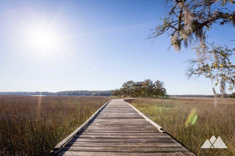 Skidaway Island Big Ferry Trail near Savannah
