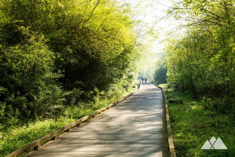 Run the Suwanee Greenway north of Atlanta, following boardwalks through a beautiful wetland forest