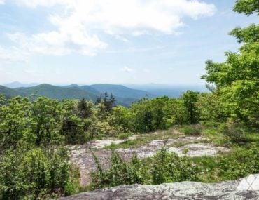 Tesnatee Gap: Appalachian Trail to Cowrock Mountain