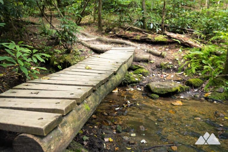 Appalachian Trail: hike from Three Forks to Springer Mountain, crossing rustic bridges in a lush creek valley