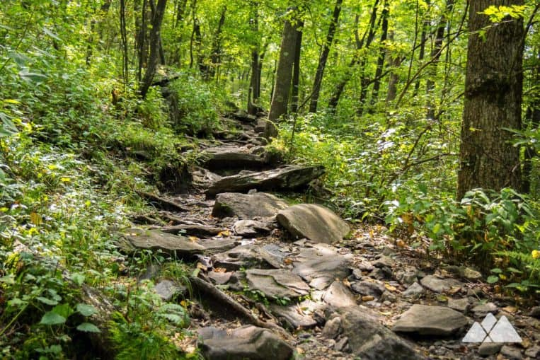 Appalachian Trail: hike to Springer Mountain, climbing through a lush, boulder-filled forest to the southernmost end of the AT