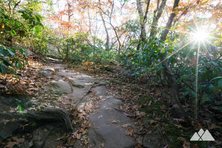 Vogel State Park: hike the Coosa Backcountry Trail to Blood Mountain on the Appalachian Trail
