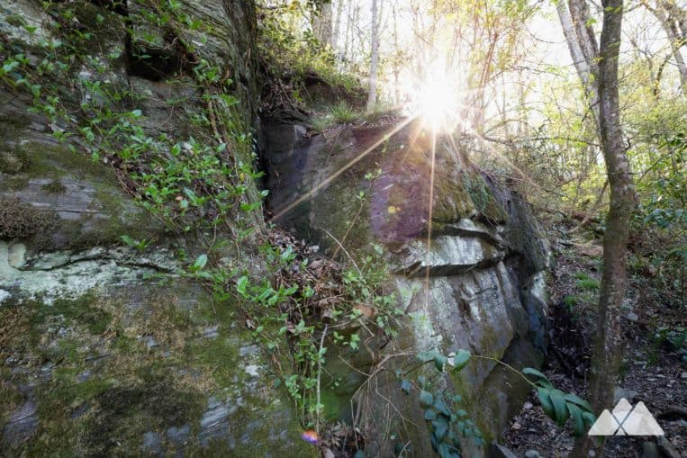 West Palisades Trail: hike the scenic banks of the Chattahoochee River in metro Atlanta