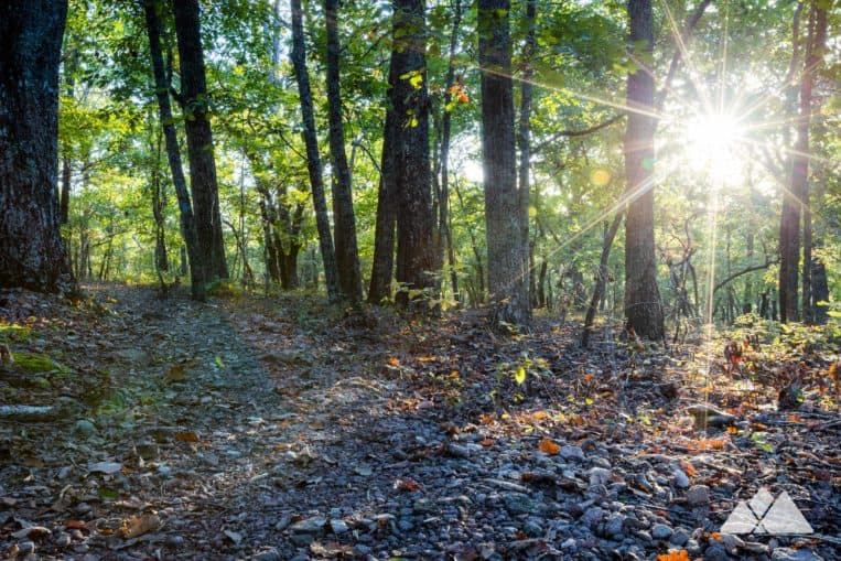 FDR State Park: hike the Pine Mountain Trail through a beautiful forest south of Atlanta