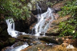 Waterfalls in Blue Ridge, GA: our favorite hiking trails