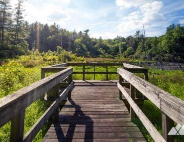 Songbird Trail at Lake Conasauga