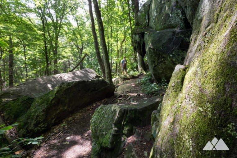 Bear Hair Gap Trail at Vogel State Park