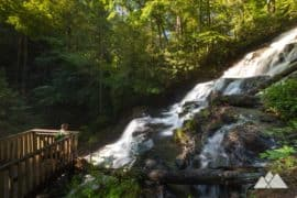 Amicalola Falls State Park Top Hikes And Adventures