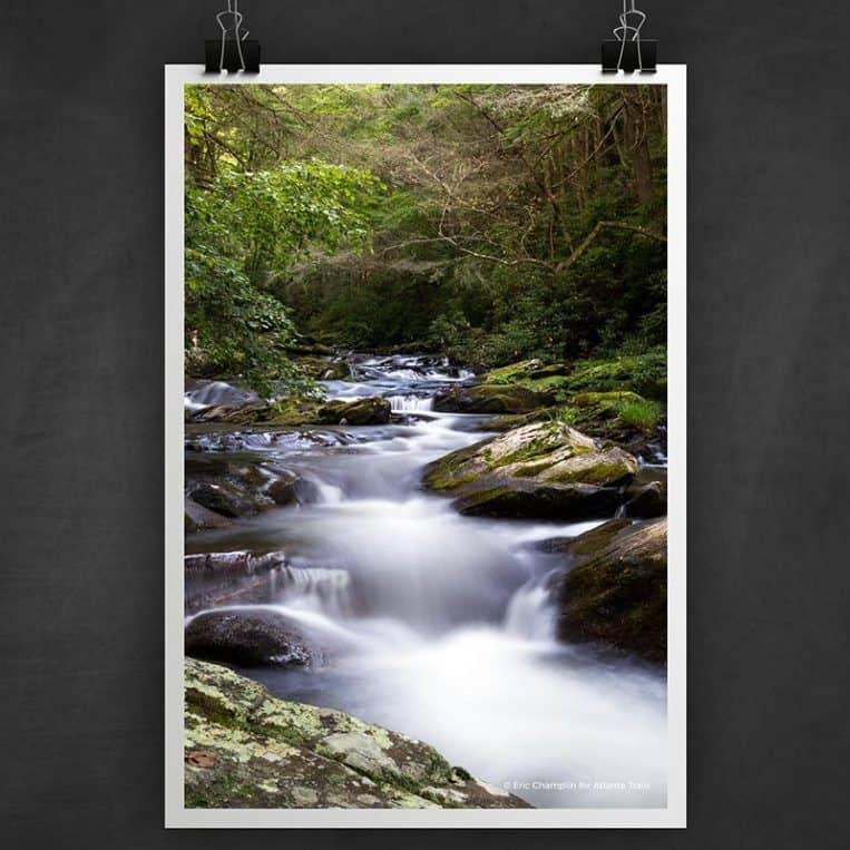 Atlanta Trails Jacks River Trail Photo Art Print
